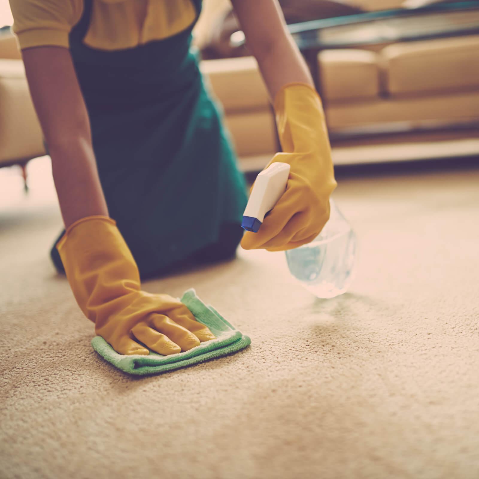 Carpet cleaning   Everlast Floors