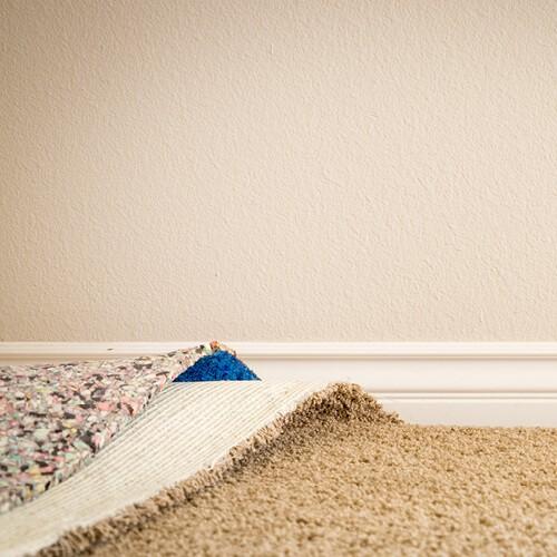 Carpet | Everlast Floors