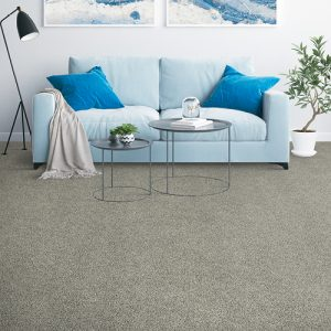 Couch on carpet flooring | Everlast Floors