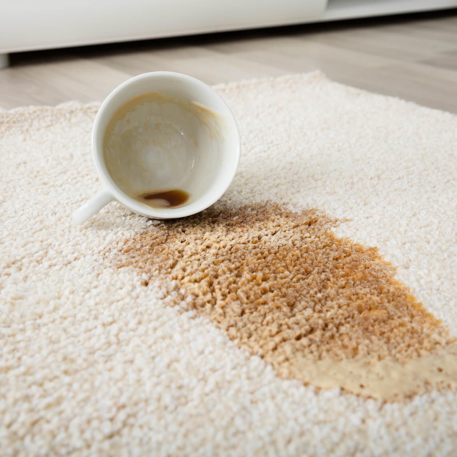 Coffee spill on area rug | Everlast Floors