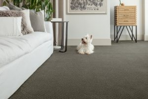 Carpet flooring | Everlast Floors